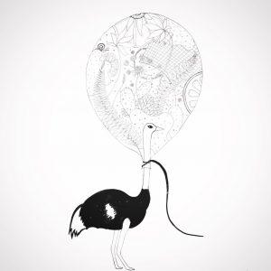 struisballon